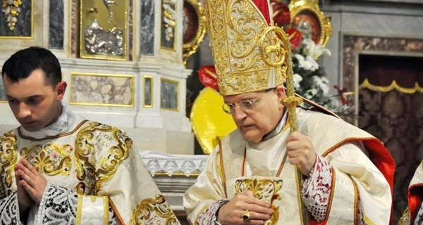 cardenal-raymon-leo-burke-mensajesdediosalmundo-blogspot-jpg2-webp1