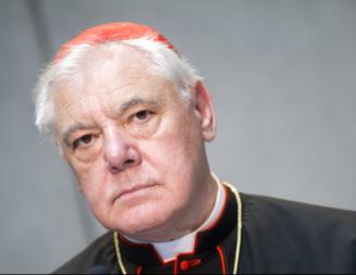 Cardenal Müller  critica el Documento del Sínodo de la Amazonía