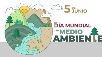 dc3ada-mundial-m.-ambiente-2019-blogw